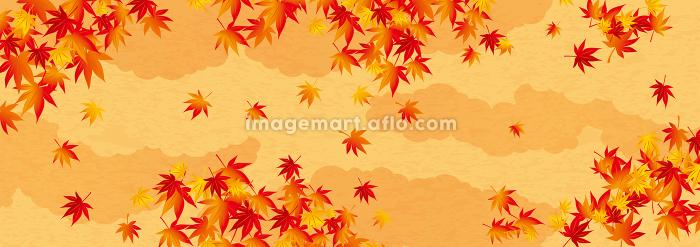 パターン 紅葉 秋の販売画像