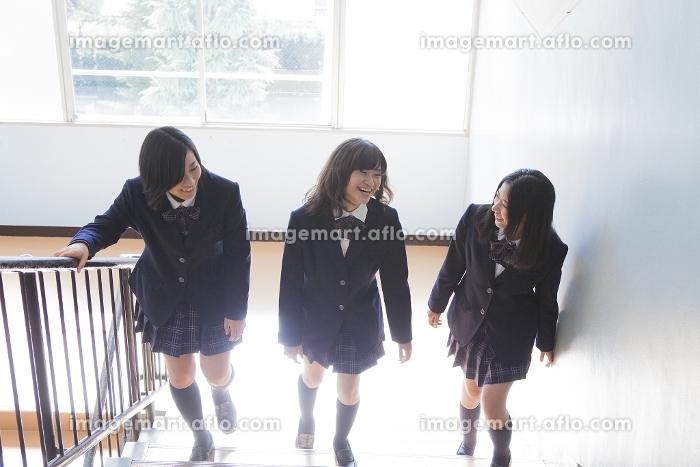 階段で談笑する高校生たち