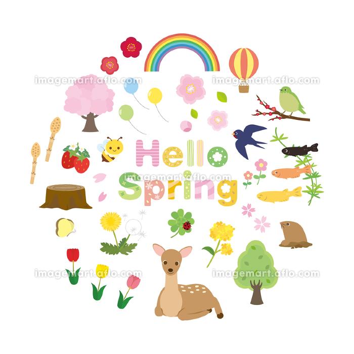 イラスト 春の 春の野草 イラスト
