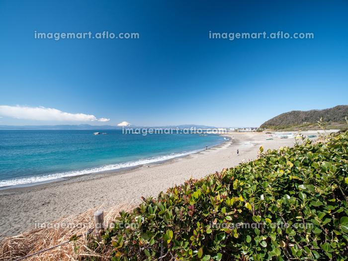 早春の葉山町 大浜海岸の風景 2月の販売画像