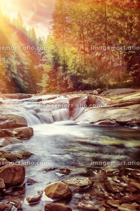 ヨーロッパ 外国 小川の販売画像