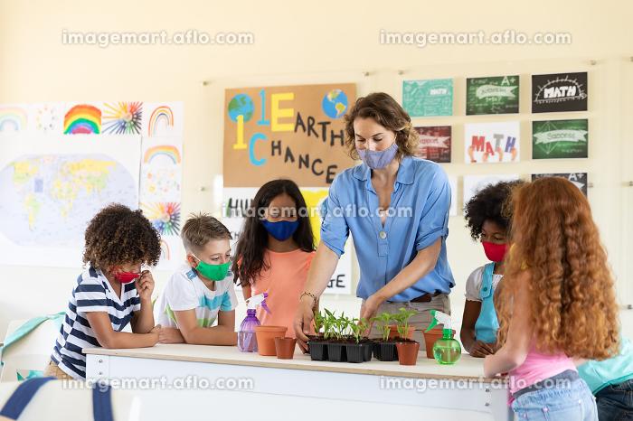 Caucasian female teacher wearing face mask at school, teaching children at school classroom. Education back to school health safety during Covid19 Coronavirus pandemic.の販売画像
