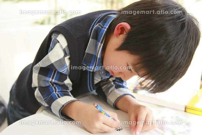 絵を描く男の子の販売画像