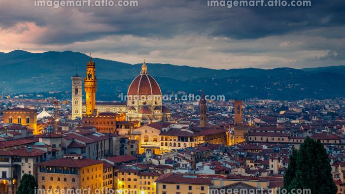 Florence at nightの販売画像