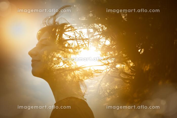 女性の横顔と木漏れ日の合成CGの販売画像