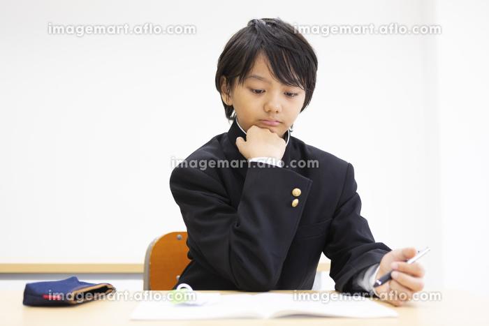 塾で勉強する中学生の販売画像