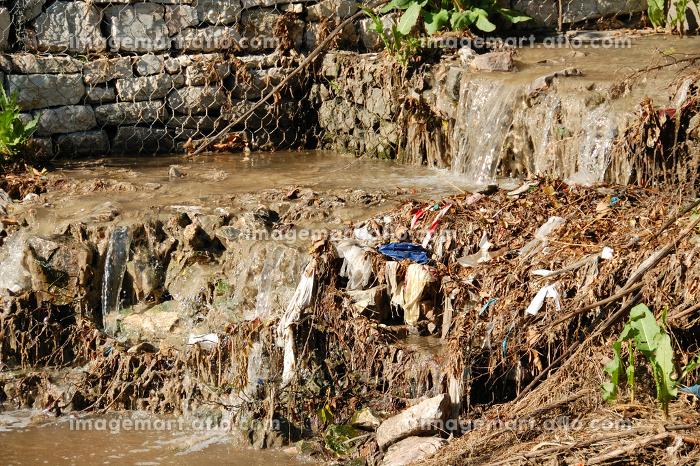 環境 汚染 泥付きの販売画像