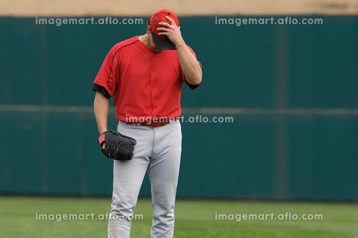 野球の販売画像