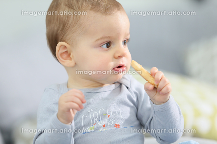 Portrait of cute baby boy eating child biscuitの販売画像