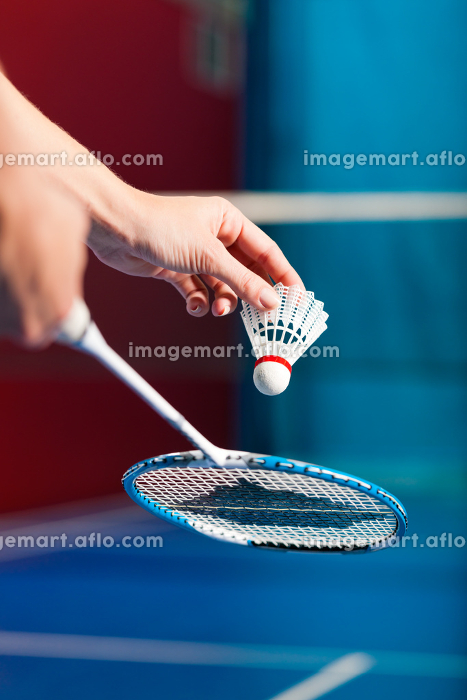 badminton in a gym - hand with ballの販売画像