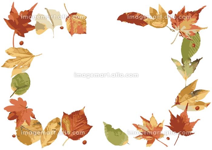 秋の葉っはのフレームの販売画像