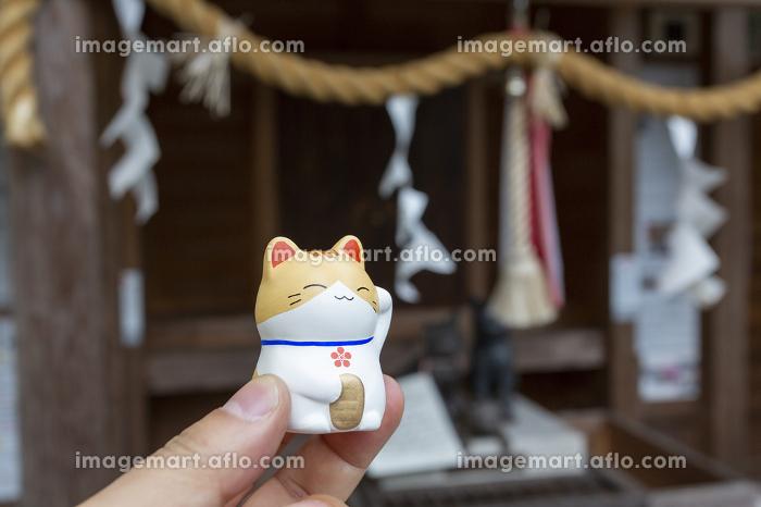 上宮天満宮の猫みくじと守護天神の販売画像