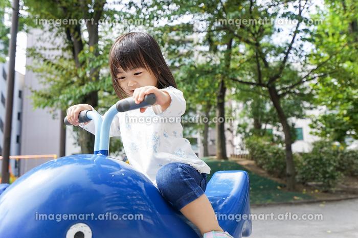 公園で一人で遊ぶ子どもの販売画像