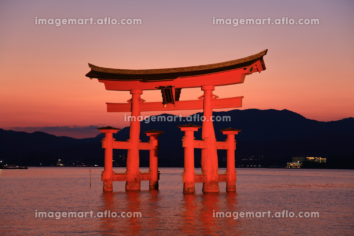 日没後の宮島 厳島神社の大鳥居ライトアップの販売画像