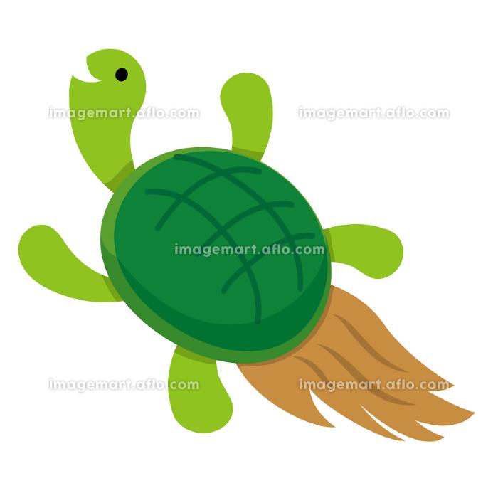 祝い亀の販売画像