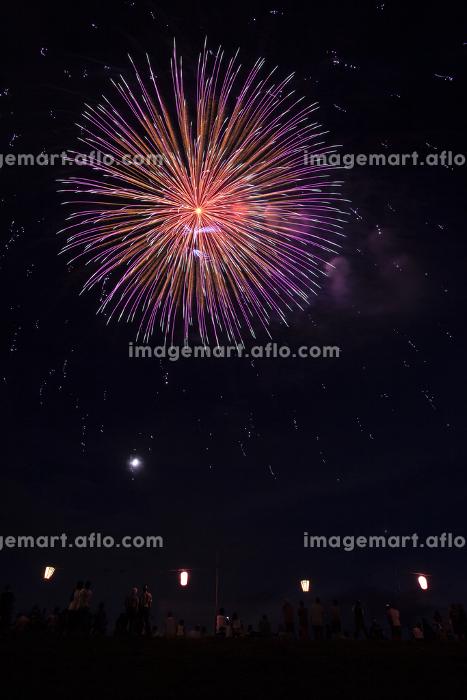 足立の花火大会の販売画像