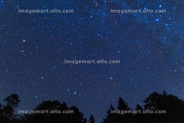 北海道・阿寒国立公園 夏のオンネトーで眺める星空の販売画像