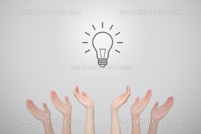電球と手の販売画像