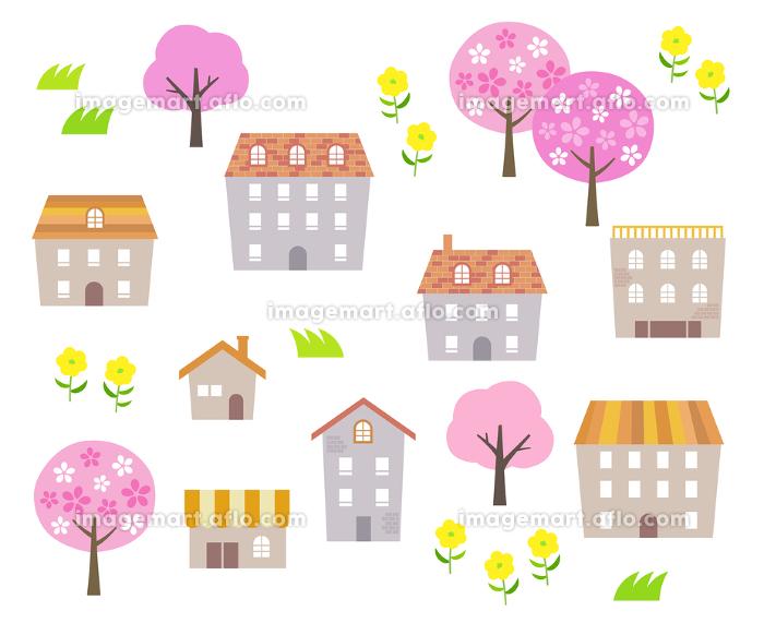春 桜の木と街並みの販売画像