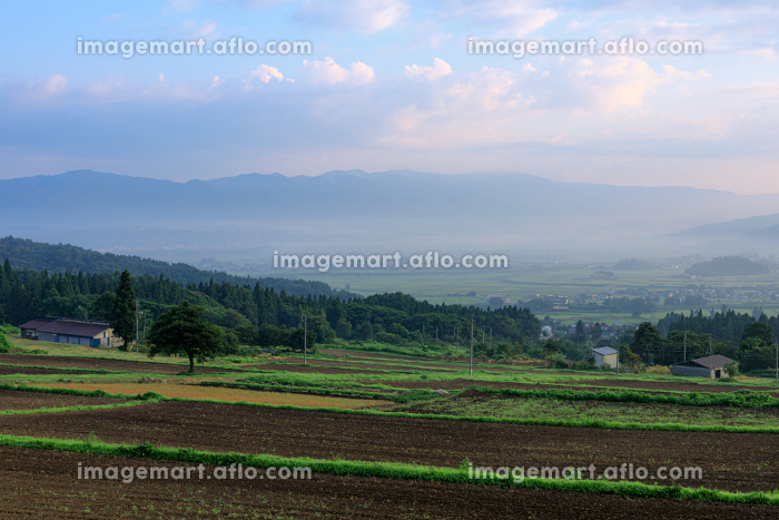 長野県・木島平村 幻想的な早朝の朝霧の風景の販売画像