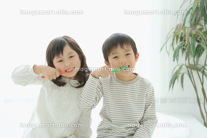 歯磨きをする日本人の子供の販売画像
