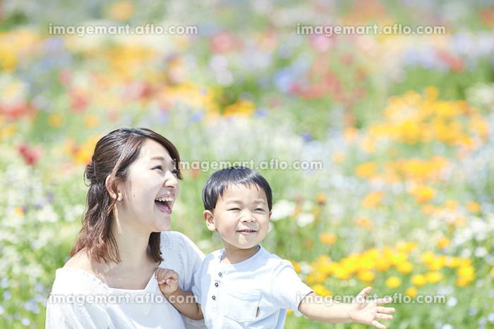 花畑と笑顔の日本人親子