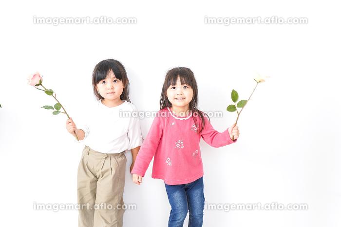 お花を持つ女の子たちの販売画像