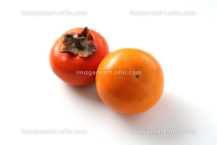 柿2つ 白背景の販売画像