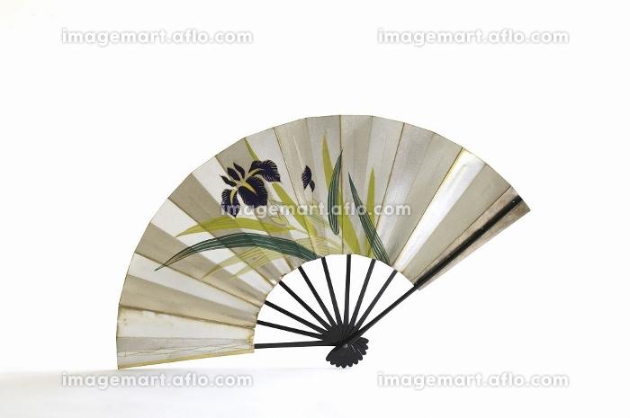 日本舞踊用の扇の販売画像
