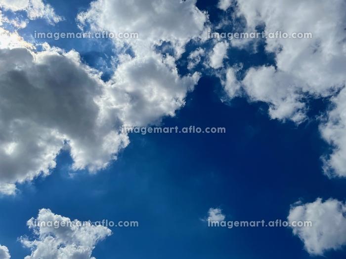 青空、夏の販売画像