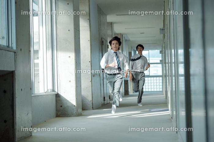 廊下で走っている男子高校生の販売画像