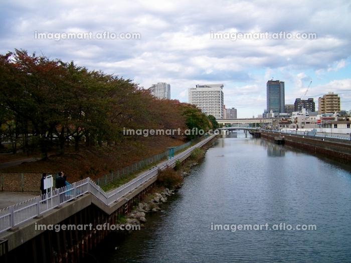 川,公園の販売画像