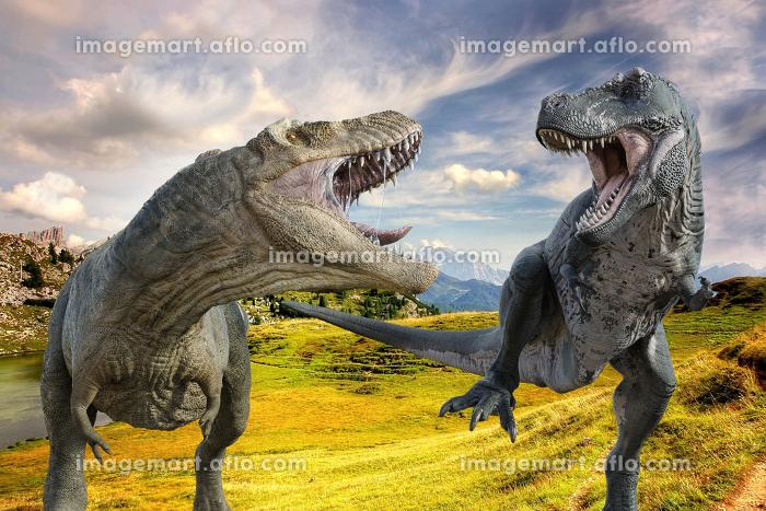 大草原の中を白っぽいティラノサウルスと青っぽいティラノサウルスが走りながら牙を見せ合い威嚇している