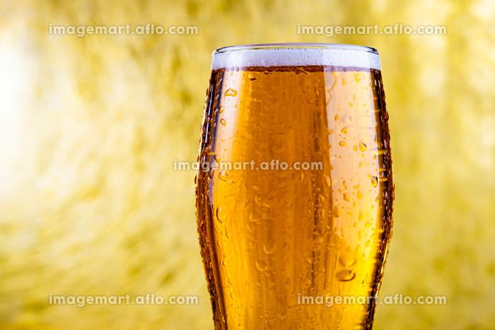 ビールの販売画像