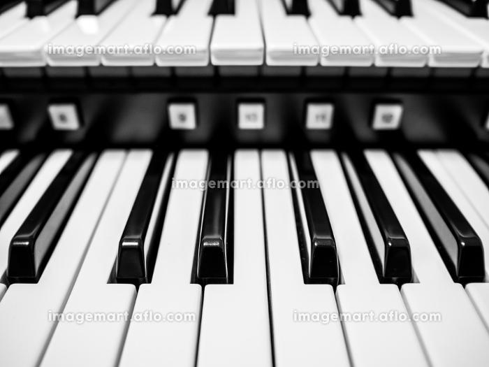 オルガンの鍵盤の販売画像