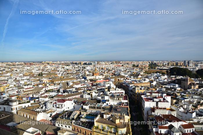 ヒラルダの塔からの眺望、セビリア大聖堂、スペインの販売画像