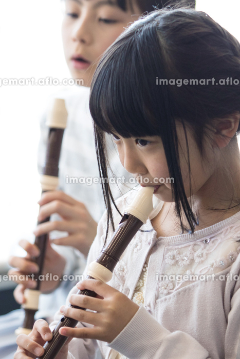 音楽室の授業を受ける小学生の販売画像
