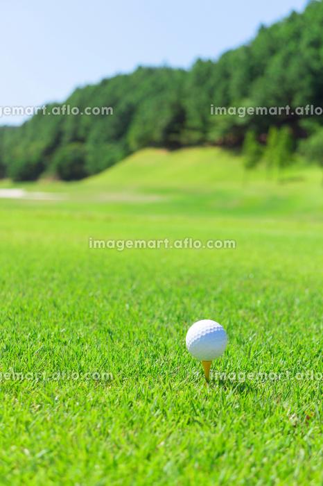 ゴルフ ティーショットの販売画像