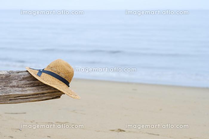海と流木と麦わら帽子の販売画像