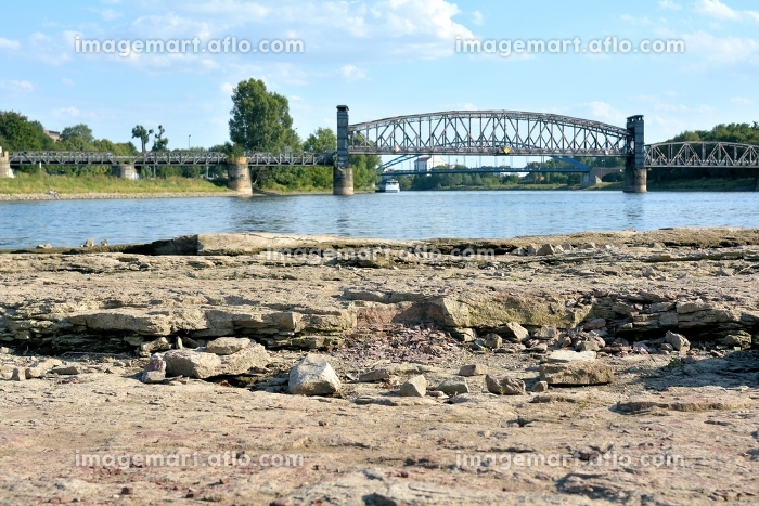 domfelsen in the dry riverbed of the elbe near magdeburgの販売画像
