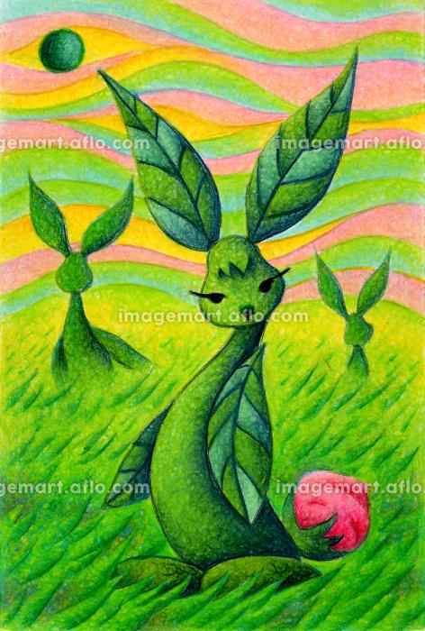 植物ウサギの販売画像