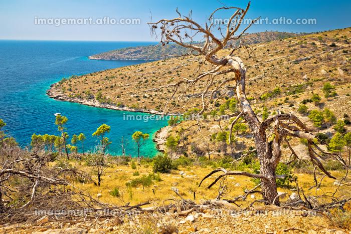 Island of Brac south coastの販売画像