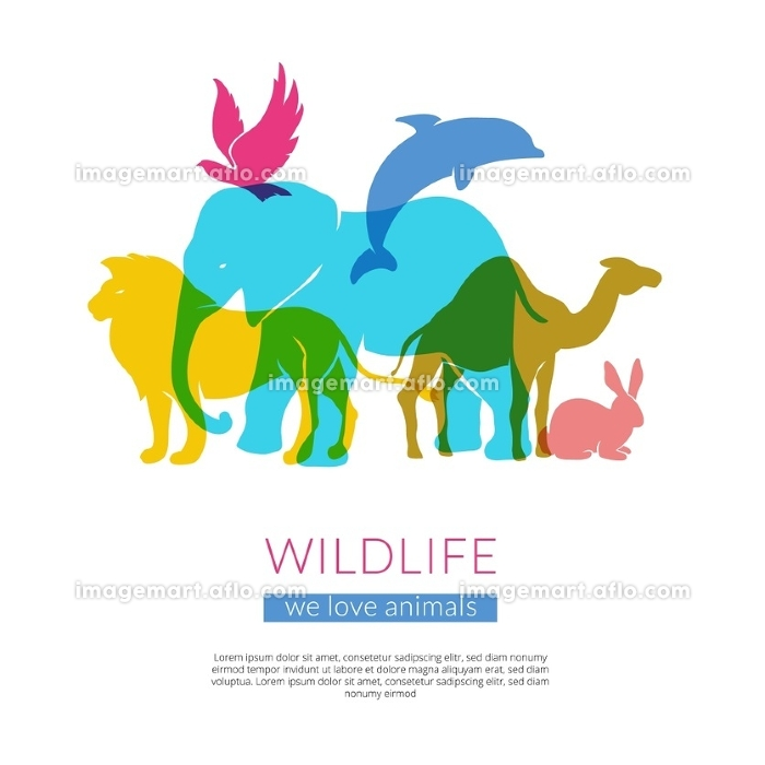 Wildlife Animals Flat Silhouettes Composition Poster . Wildlife animals and birds flat colorful silhouettes composition poster with elephant lion eagle and camel vector illustration