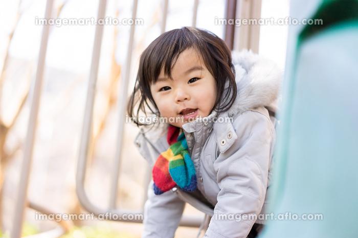 遊具で遊ぶ子ども(カメラ目線・楽しさ)の販売画像