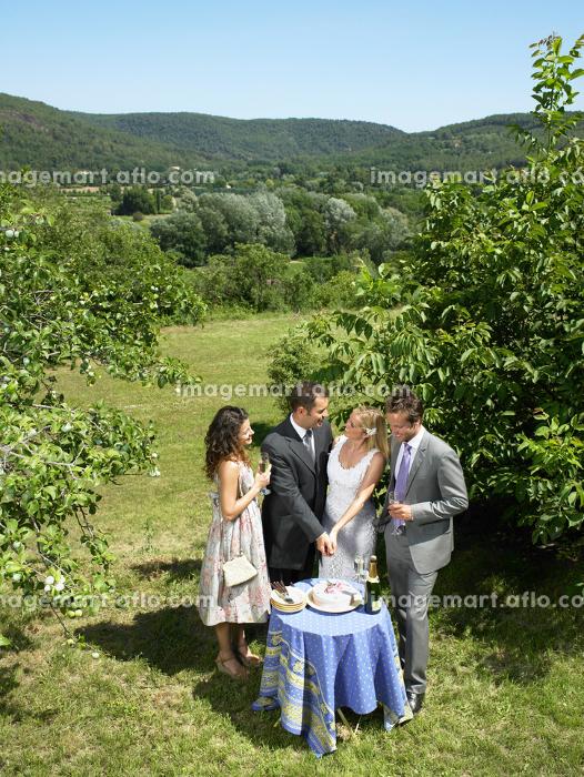 Wedding couple cutting cake in gardenの販売画像