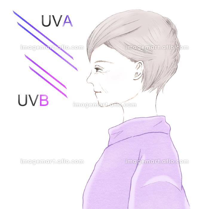 紫外線ダメージとシニア女性の横顔 UVAとUVBの違いの販売画像