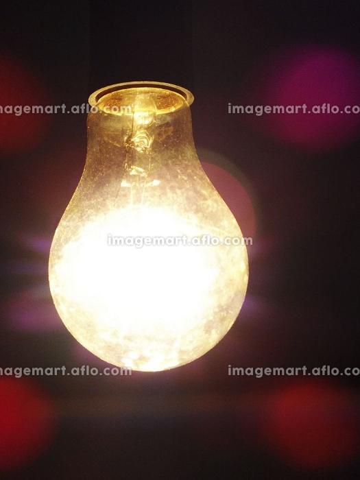 白熱電球の裸電球の販売画像