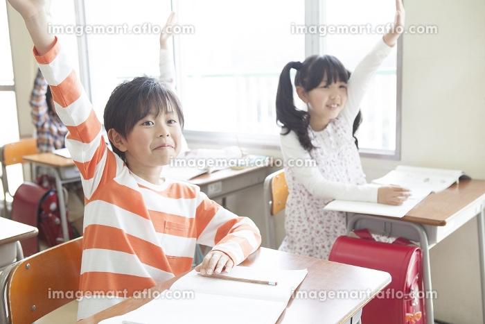 手をあげる小学生の販売画像