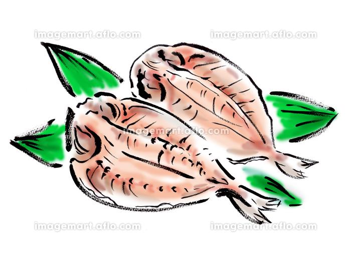 アジの干物の和風手描きイラスト素材の販売画像