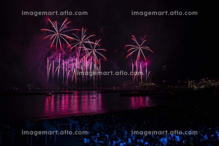 熱海の花火。熱海海上花火大会。の販売画像